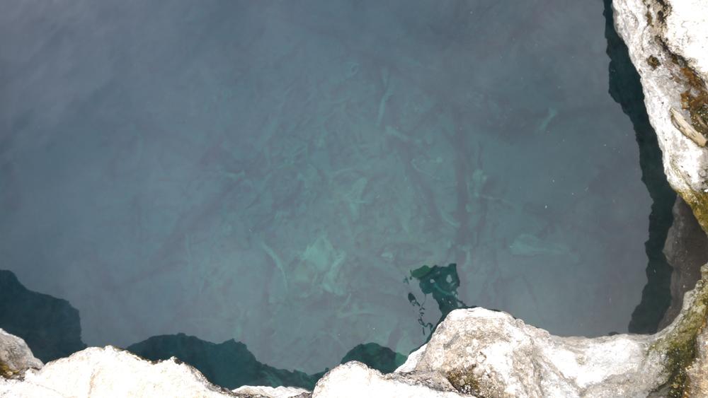 青い温泉は綺麗だが、地表がもろくあまり近づけない。奥には動物の骨が見える