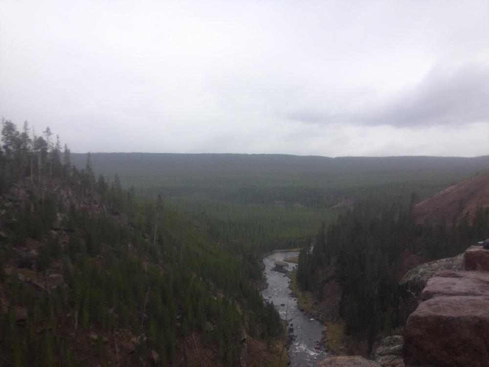 滝のある場所の逆側を撮影。綺麗な森が見える