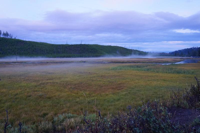 遠くにある川から出る朝もやと、草の色そして白みかけた空が美しい
